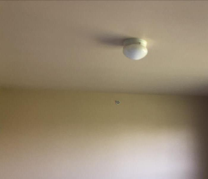 Mold remediated from ceiling.