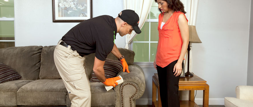 Festus, MO carpet upholstery cleaning