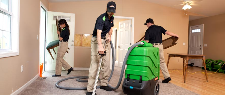 Festus, MO cleaning services